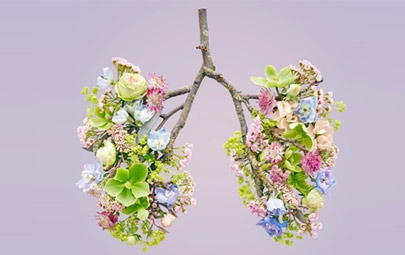 Your guide to managing hayfever